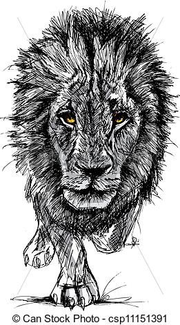 Vector - Sketch of a big male African lion - stock illustration, royalty free illustrations, stock clip art icon, stock clipart icons, logo, line art, EPS picture, pictures, graphic, graphics, drawing, drawings, vector image, artwork, EPS vector art