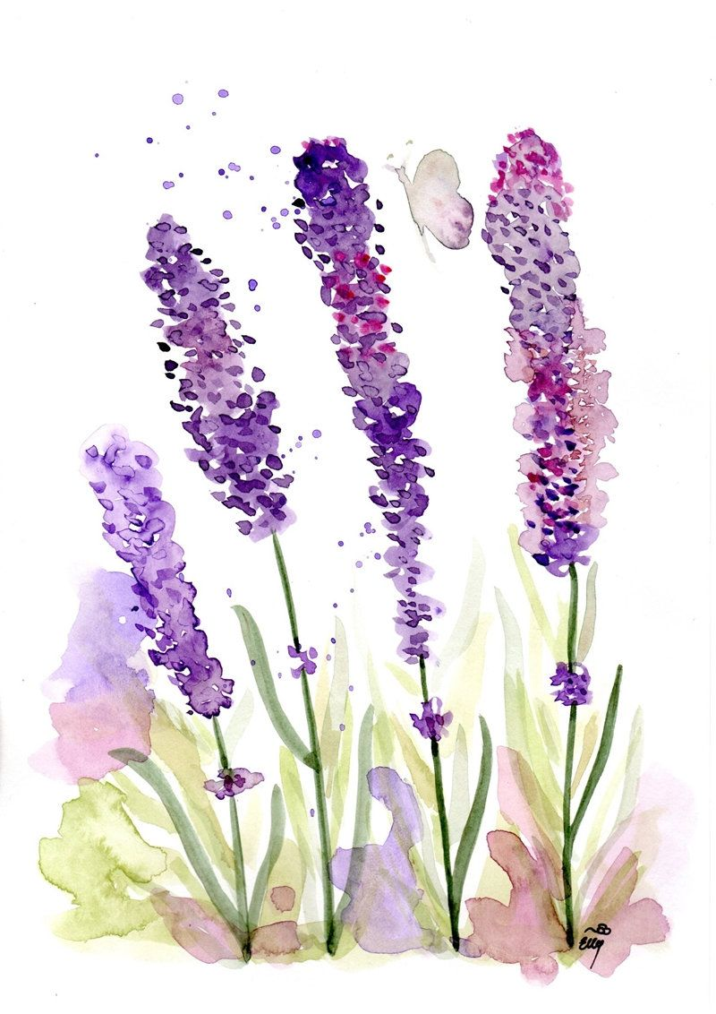 Lavender Watercolour Flowers Purple Art Watercolor Print Etsy In 2020 Purple Art Flower Wall Art Watercolor Flowers