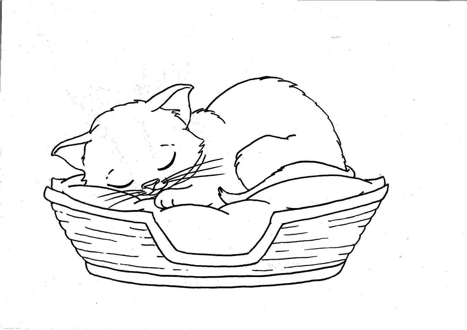 Coloring Kitten Pages Sleepi And For Kids Sleeping