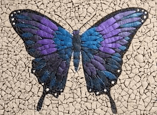 Membuat Gambar Kolase Dari Biji Bijian 80 Gambar Hewan Untuk Kolase Biji Bijian Terbaru Gambar Hewan Download Ini Lem Untuk Membu Di 2020 Kolase Seni Kolase Seni