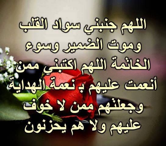 Photos For Mac And Ios 2c The Missing Manual 2cphotos 2c Images 2c Photo Jpg 545 480 Islamic Quotes Beautiful Prayers Arabic Quotes