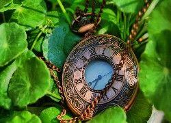 Zegarek, Łancuszek, Liście