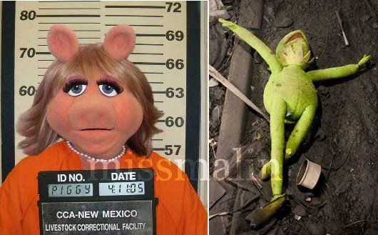 First Celebrity Death: Swine Flu Claims Kermit The Frog