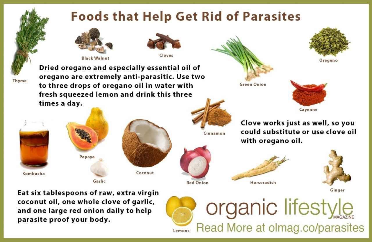 anti paraziti intestinali