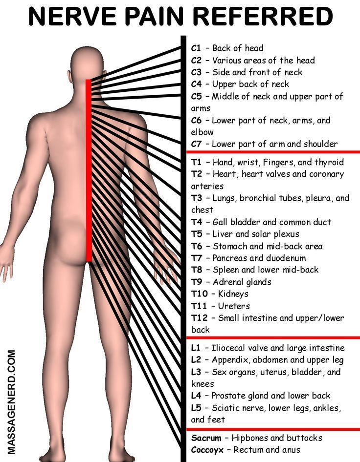 Acupuncture to Relief Pains Massage therapy, Spine