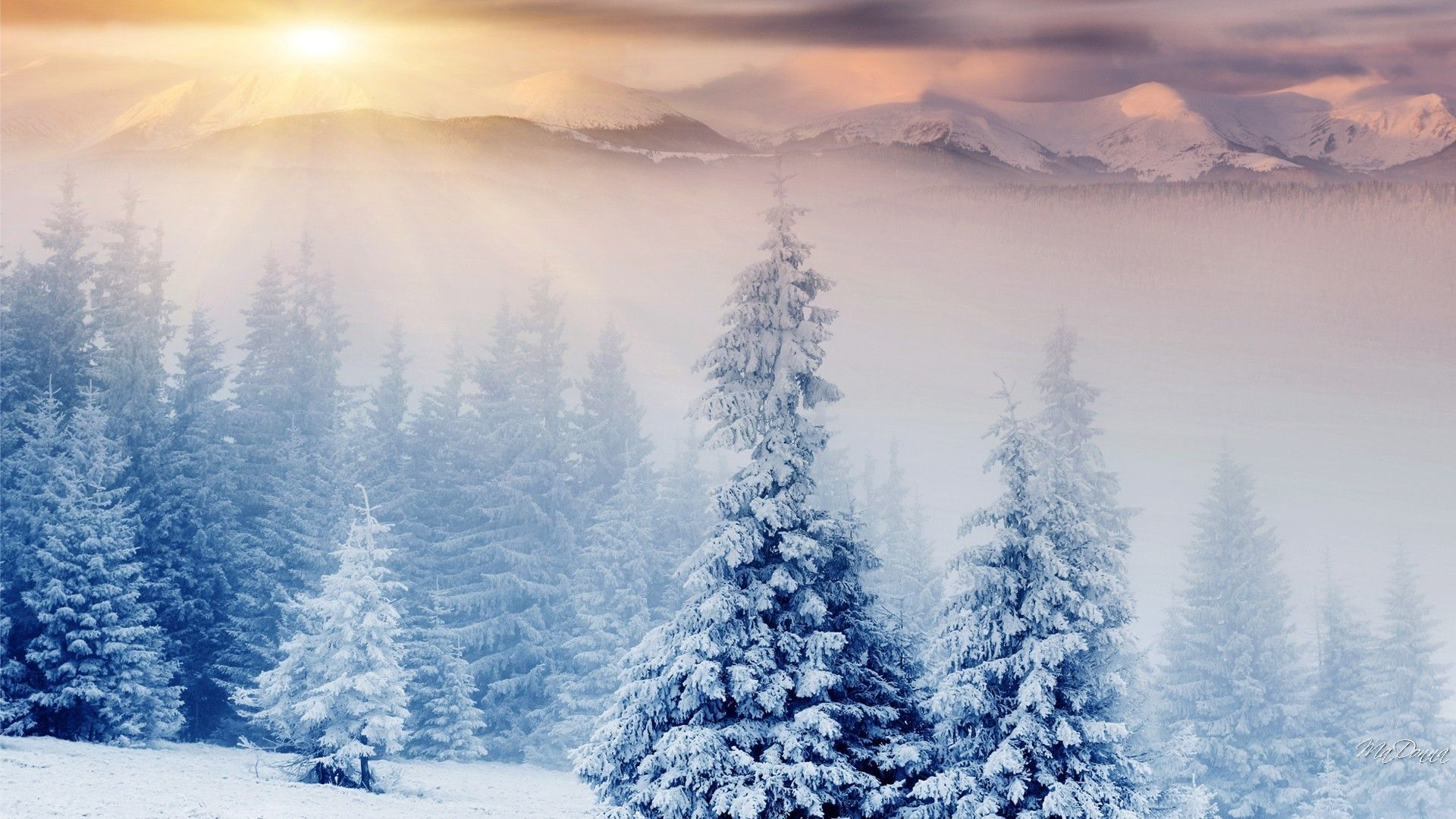 1920x1080 Fog Sunset Trees Wonderland Snow Christmas Mist