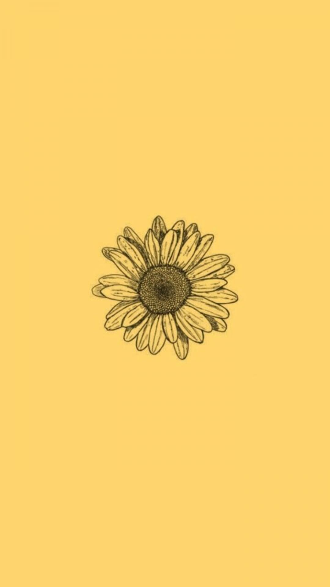 Flower Android Iphone Desktop Hd Backgrounds Wallpapers 1080p 4k 128120 Iphone Wallpaper Yellow Yellow Aesthetic Pastel Aesthetic Iphone Wallpaper
