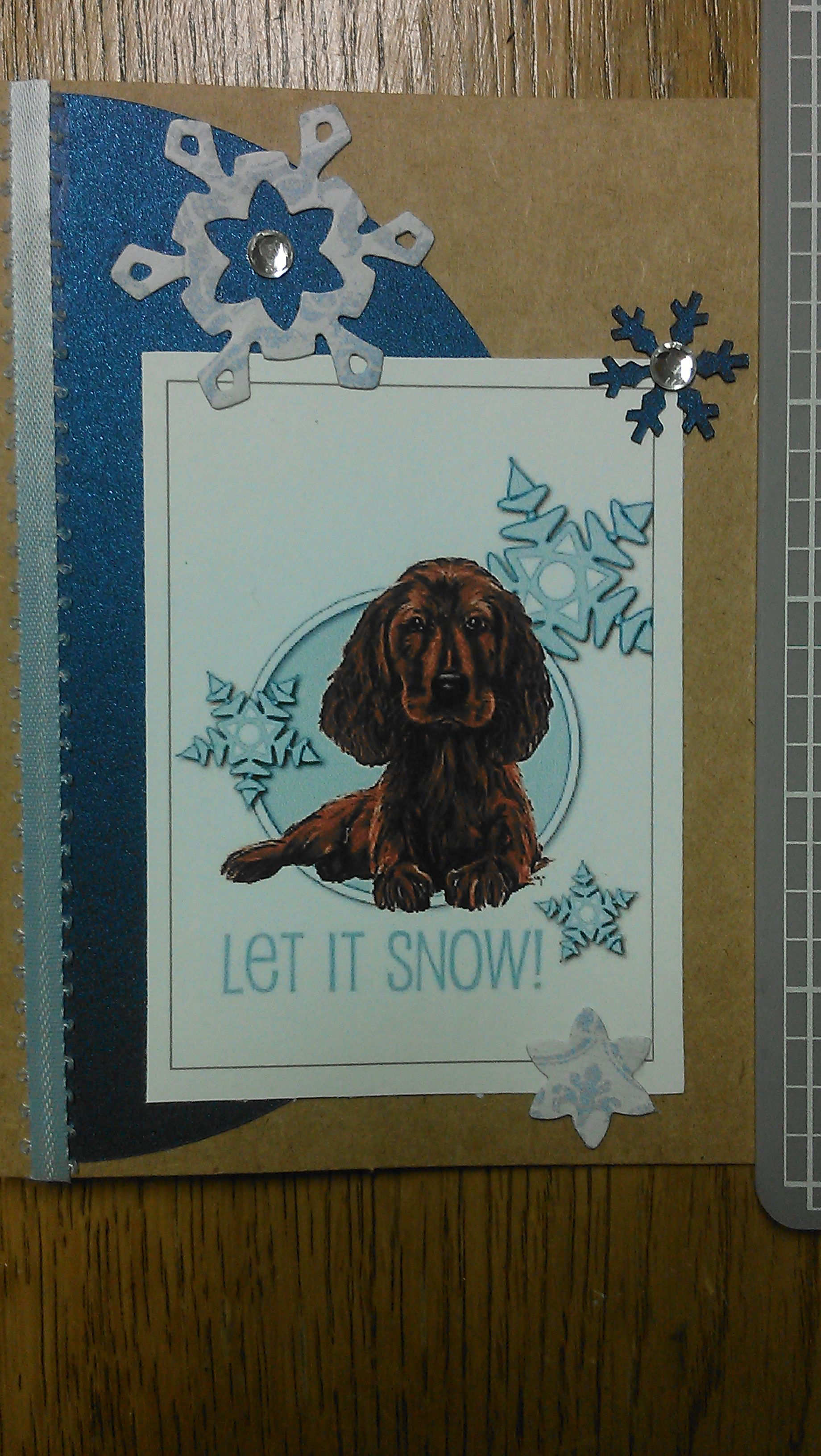 Irish Setter Christmas Card Christmas cards, Cards
