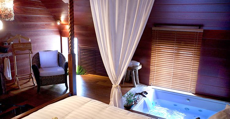 Jacuzzi 2 places, lits à baldaquin, fontaine \ bassin avec carpe