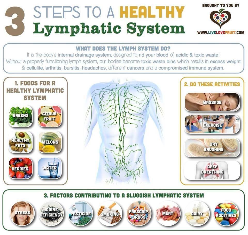 The 25 Best Detox Lymphatic System Ideas On Pinterest