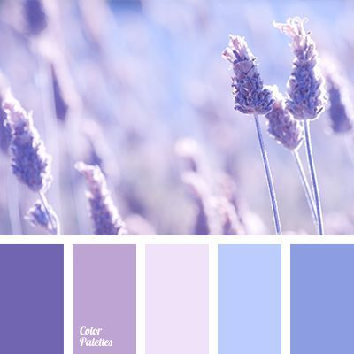 1000 Ideas About Shades Of Blue On Pinterest Color Palette Blue Color Palette Pink Color Schemes Colour Palettes Lavender Color Palette