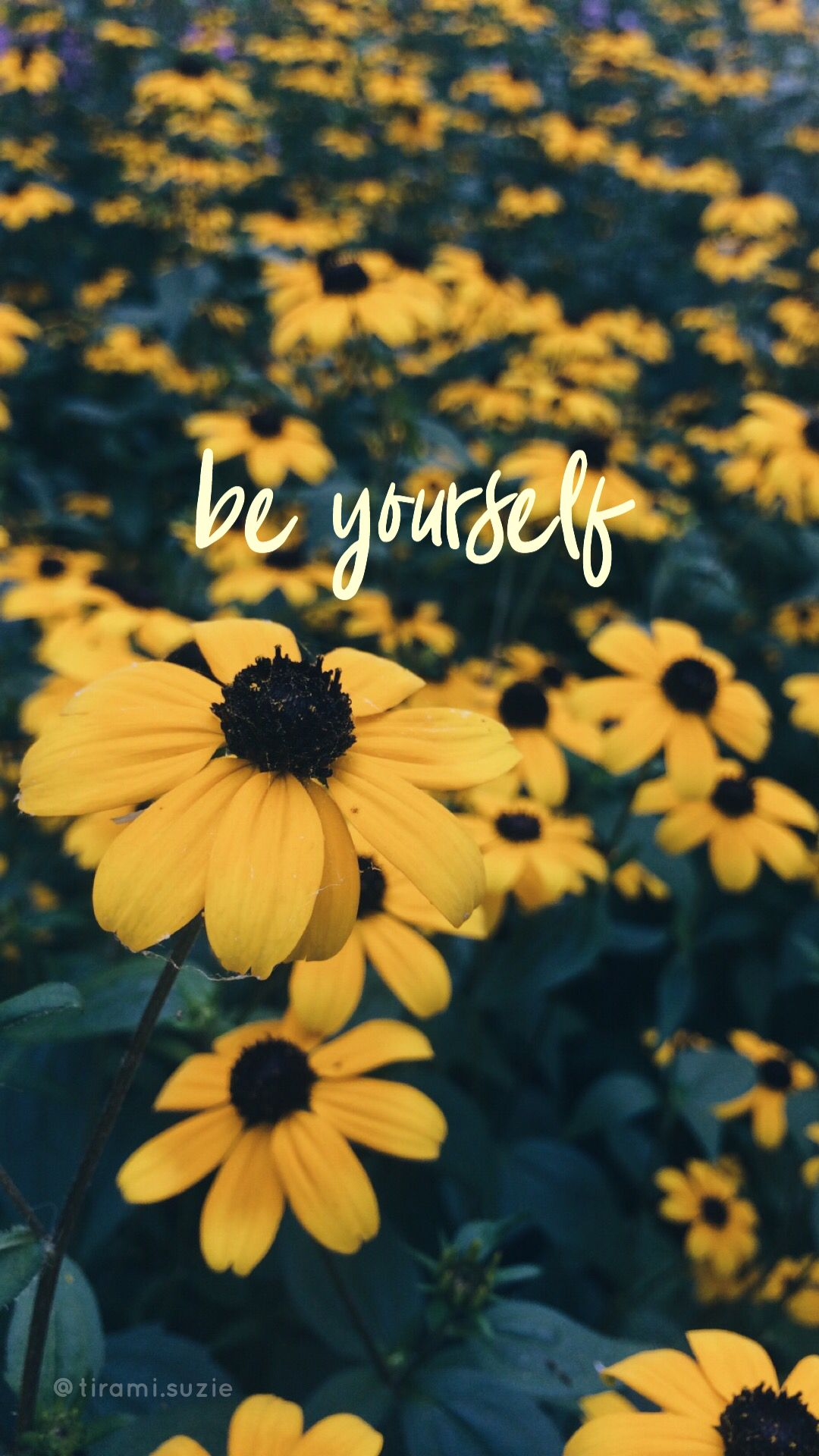 Don T Worry Be Happy Sunflower Quotes Sunflower Iphone Wallpaper Sunflower Pictures