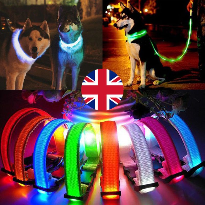 USB Rechargeable Pet Collar LED Flashing Light Band Adjustable Dog Safety Belt