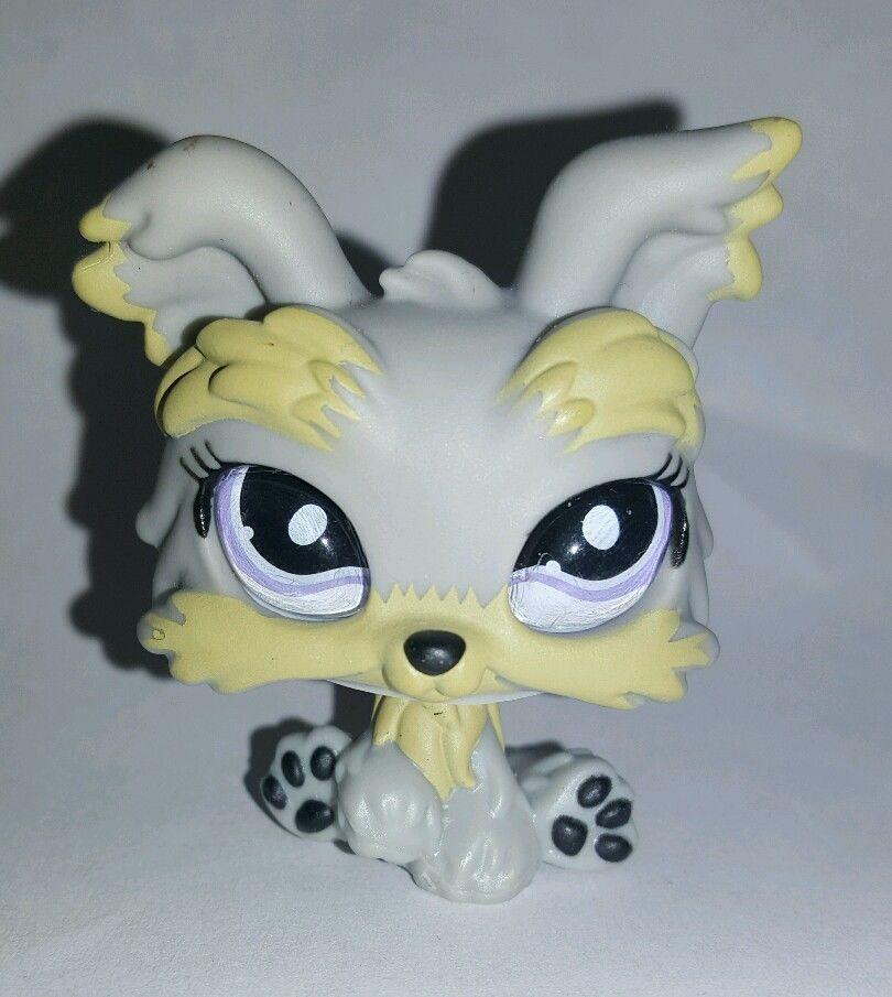 Littlest Pet Shop Grey Gray Yorkie Dog Terrier Glass Eyes 883