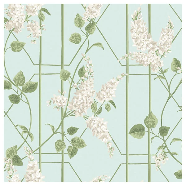 Cole Son Botanical Botanica Wisteria In Stone Olive On Duck Egg In 2020 Cole And Son Wallpaper Floral Wallpaper Botanical Wallpaper