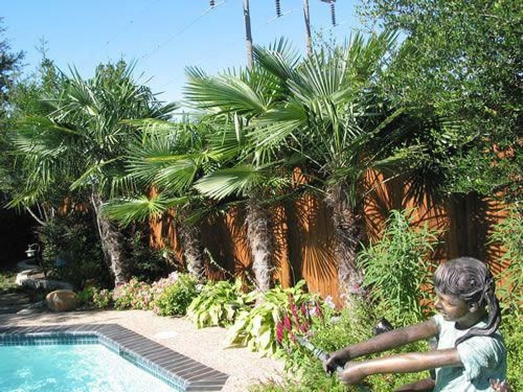 20 Wonderful Tropical Landscaping Ideas For Garden Tropical Landscaping Backyard Pool Landscaping Landscaping Along Fence