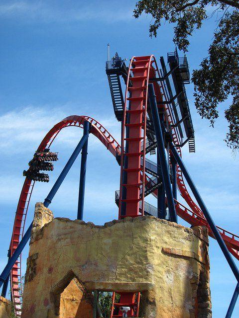 Busch Gardens Sheikra Roller Coaster Tampa Busch Gardens Tampa