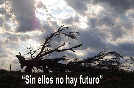 Sin ellos no hay futuro!!!