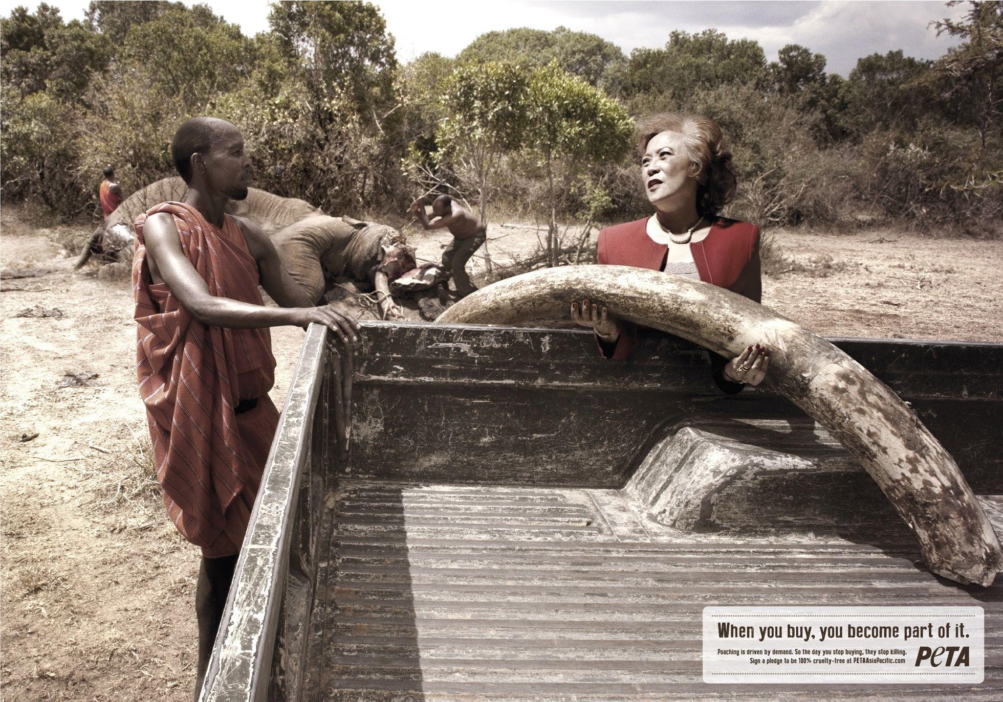 peta-elephant-zebra-bear-con estampado de cocodrilo-360959-adeevee