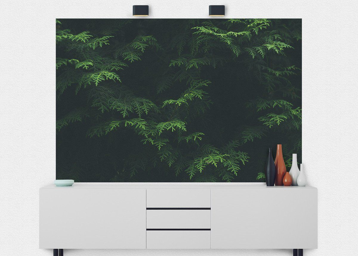 Pine Needles Texture Wall Mural (With images)