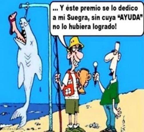 Chistes21 Com Dedicado A La Suegra Humor Bad Jokes Funny