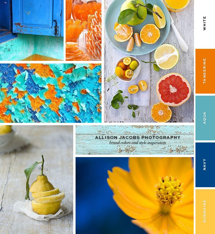 sape orange shweshwe moodboard - 736×798