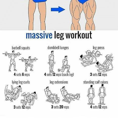 """""""must try"""" bigger leaner stronger leg workout at the"""
