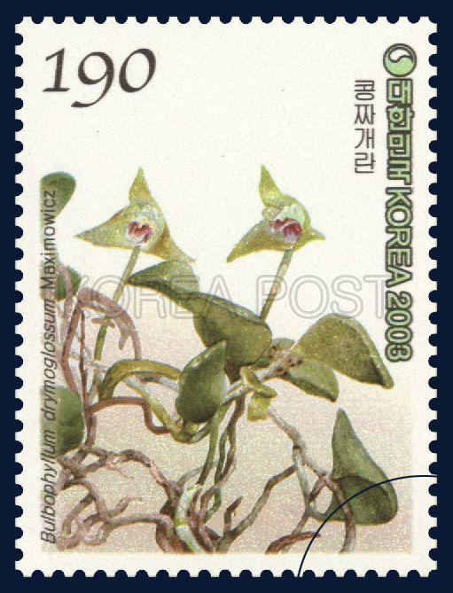 Korean Orchid Series (3rd), Bulbophyllum drymoglossum Maxim, Plants, Green, 2003 11 12, 한국의 난초 시리즈(세번째묶음), 2003년 11월 12일, 2351, 콩짜개란, postage 우표