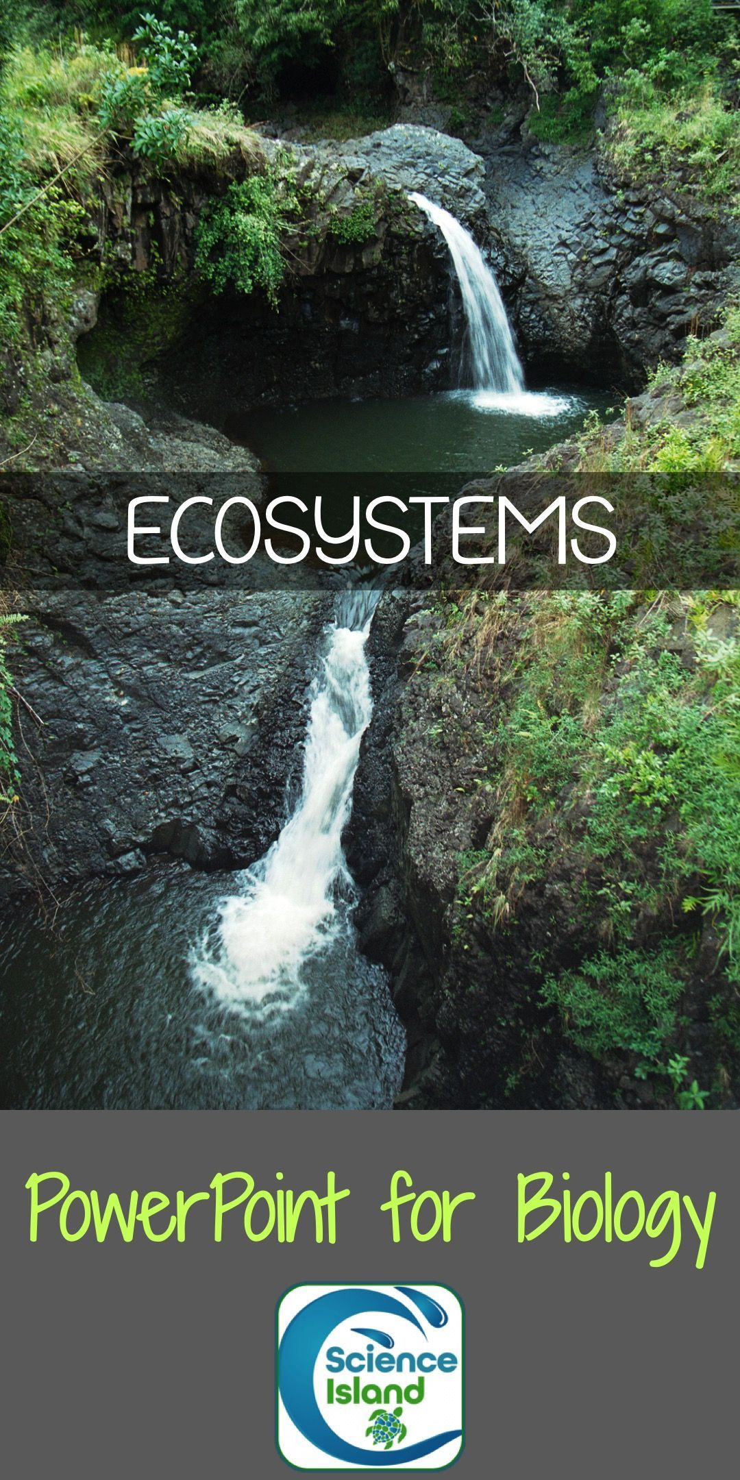Ecology Powerpoint And Notes Ecosystems Biomes