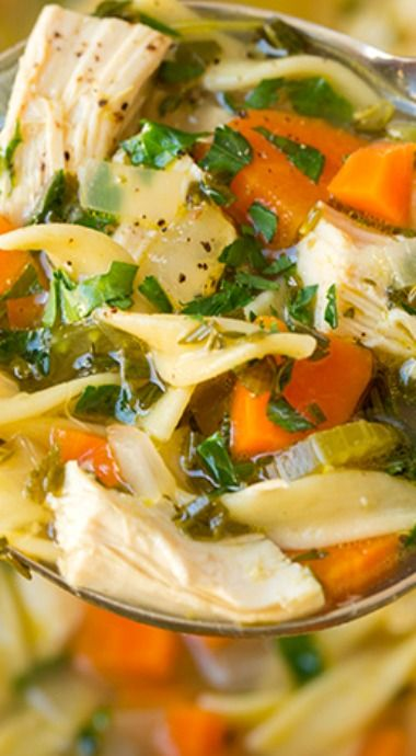 chicken noodle soup  chicken noodle soup soup recipes