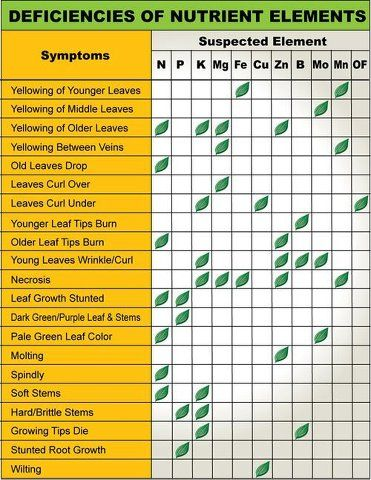 plant micronutrients chart: Natueco identify element deficiency in your plant with the help