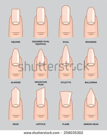 Various Nail Shapes Google Search