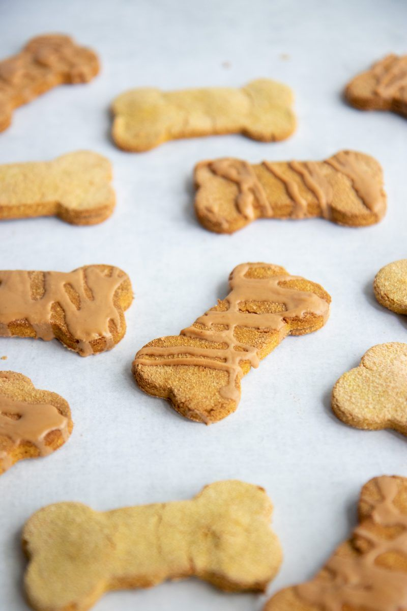 Grain Free Pumpkin Coconut Dog Treats Recipe A Dog S Life