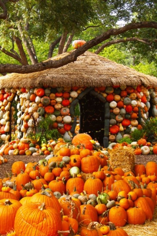7 Best Pumpkin Festivals to Take a Trip to This #Halloween! The - halloween decorations for your car
