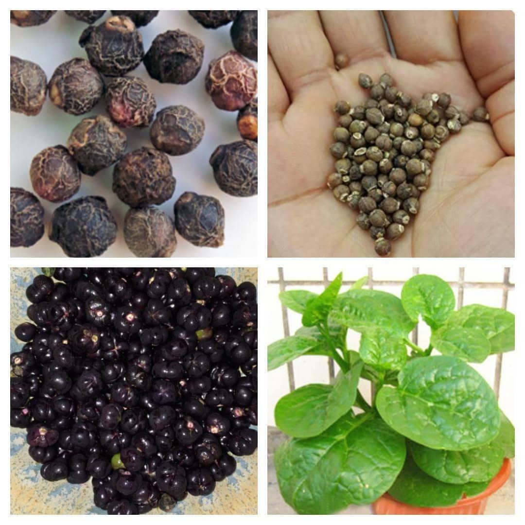 35+ Sayuran mengandung zat besi trends