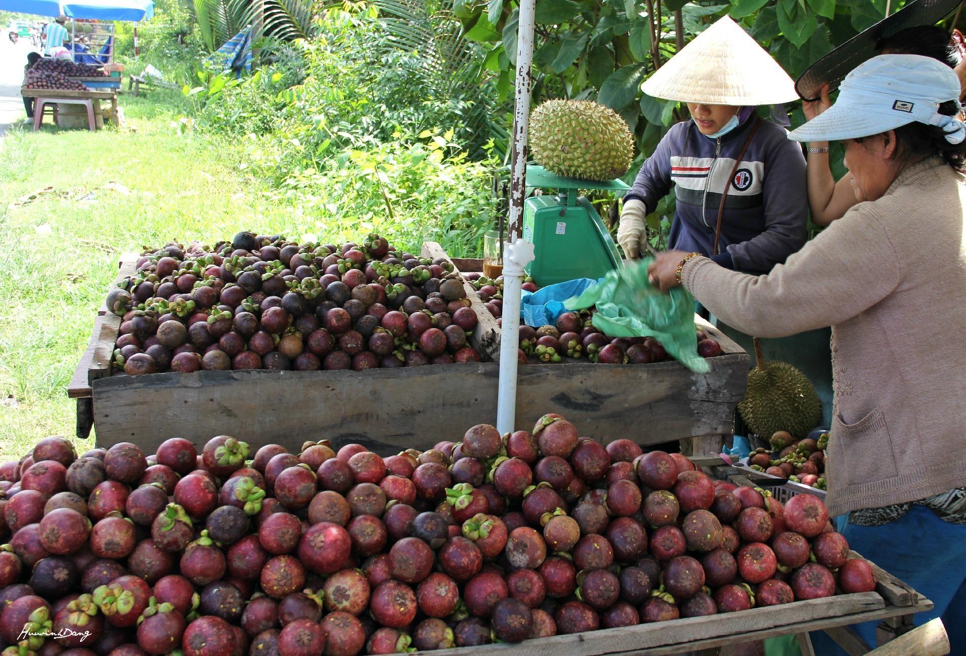 Fruits sale in Cho Lach district, Ben Tre province, Vietnam