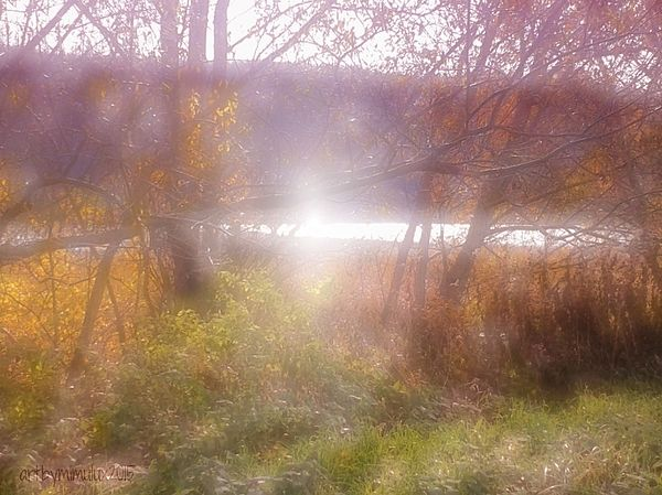 Poetic Landscape photography by mimulux patricia no