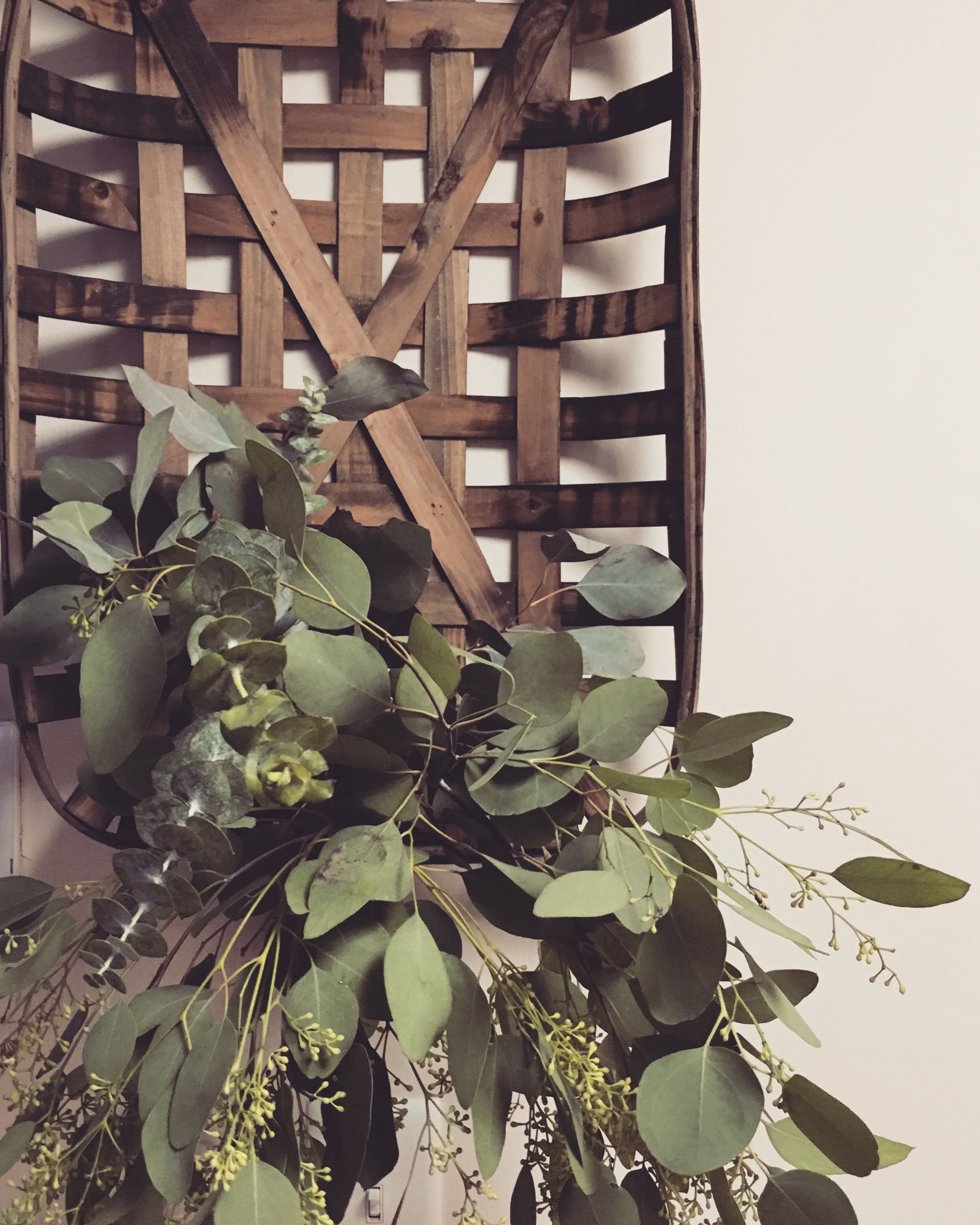 Eucalyptus and tobacco basket love