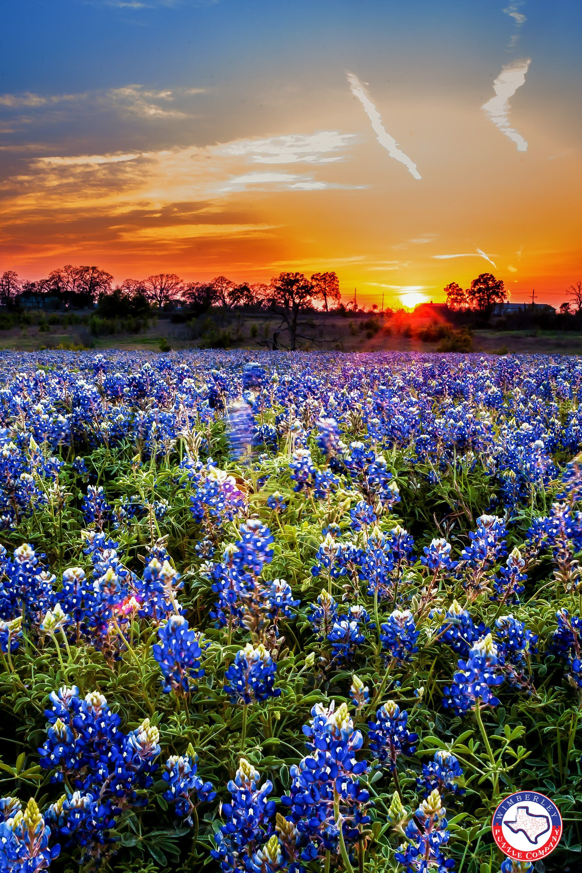 A Sunset in 2020 Beautiful landscapes, Texas