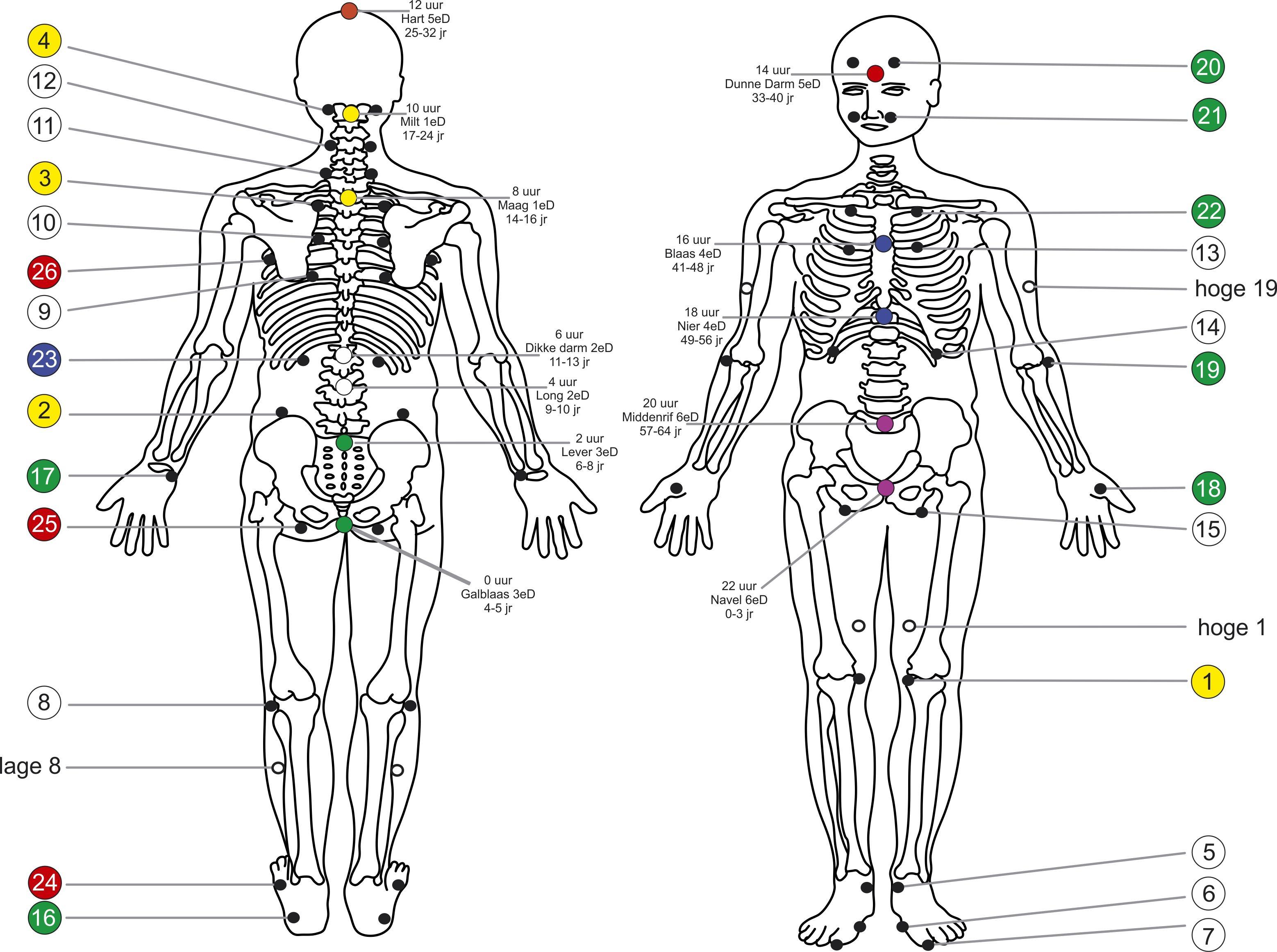 Pin By Deborah Engischplatt Certified Massage Therapist