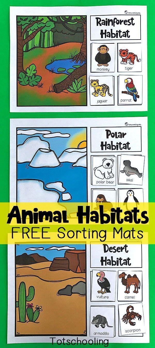 animal habitats sorting mats free printables preschool science animal habitats zoo activities. Black Bedroom Furniture Sets. Home Design Ideas