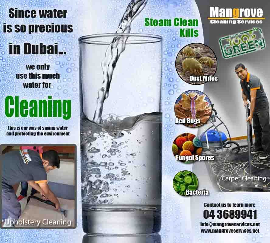 Professional Residential Deep Steam Cleaning Services In