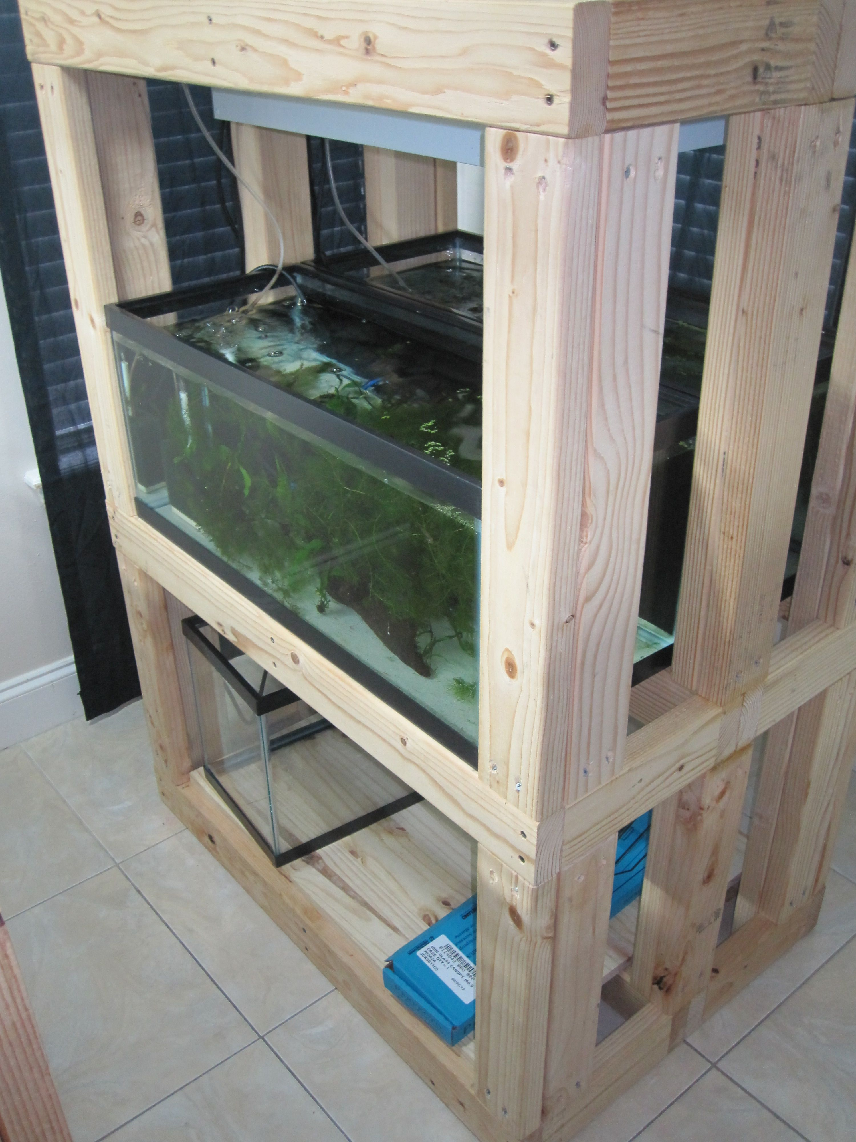 Diy Build An Aquarium Rack I Really Like This Idea But Would Make It Two Aquariums Long Rather Than Wide