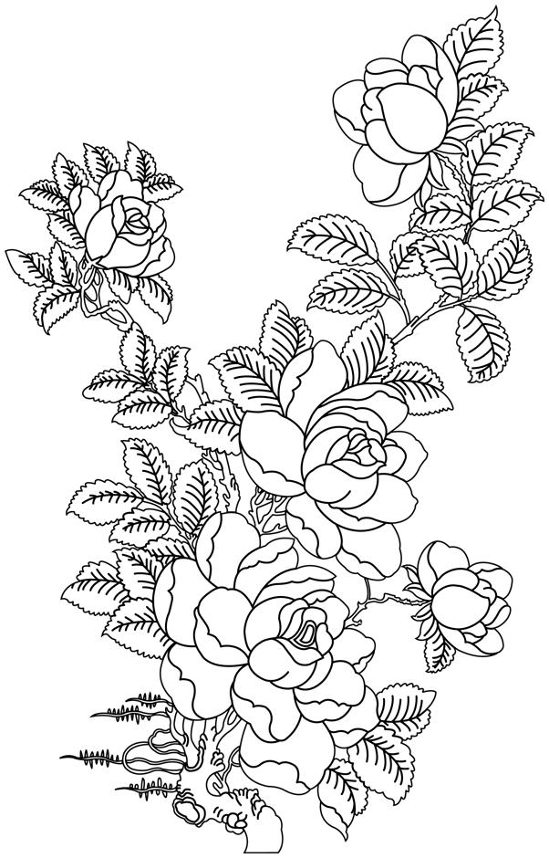 Dessin Bouquet De Rose