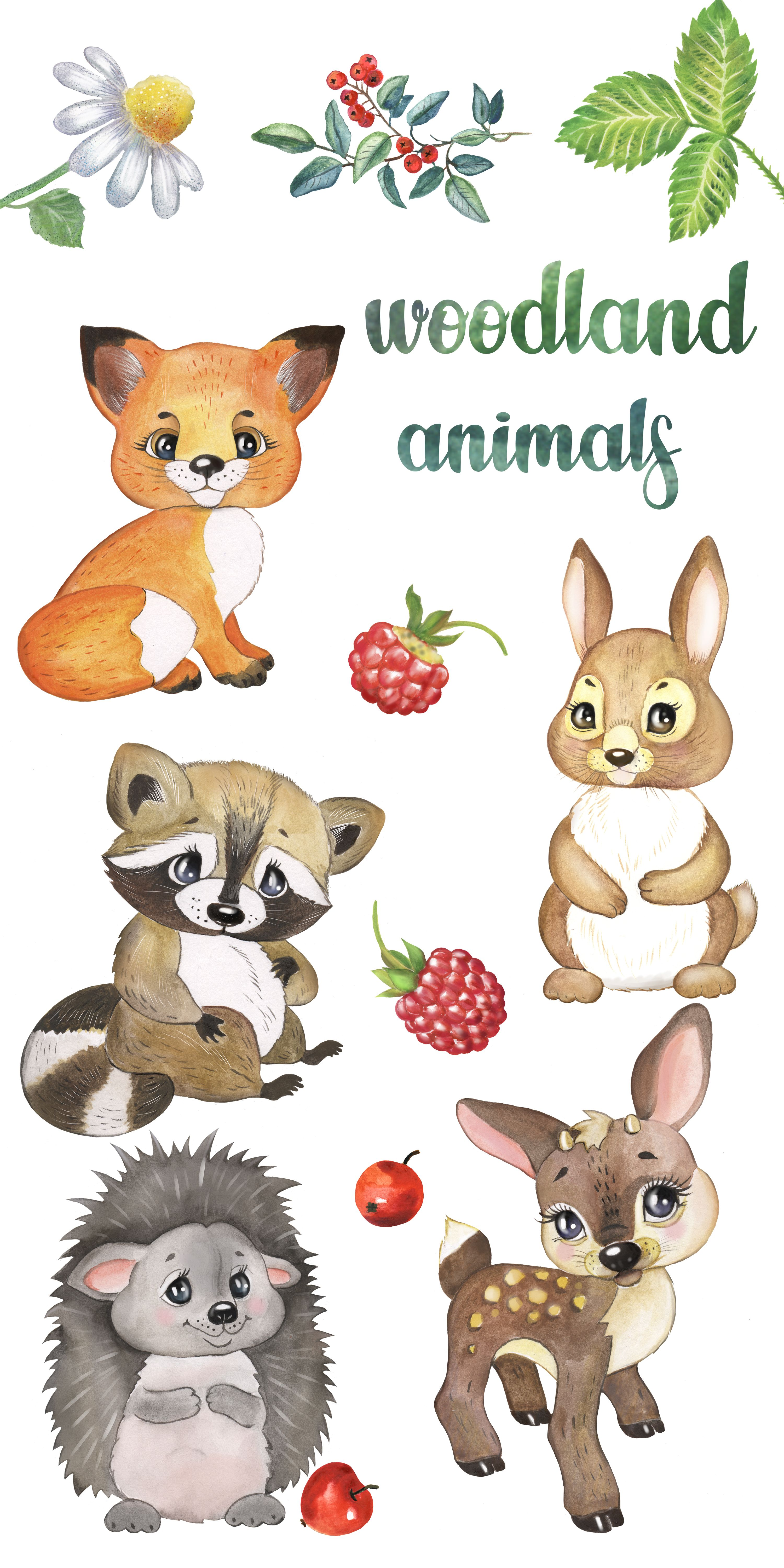 Gallery Woodland animals watercolor clipart, Forest baby animals clipart ... is free HD wallpaper.