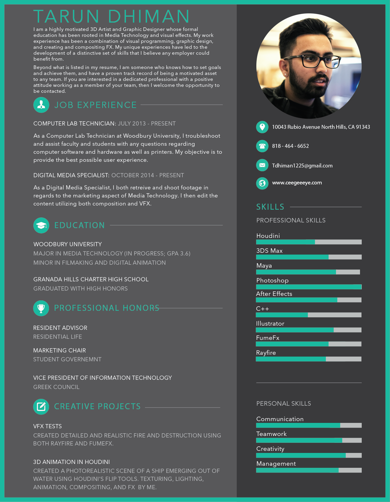 Magnificent Vfx Artist Fresher Resume Pictures Inspiration