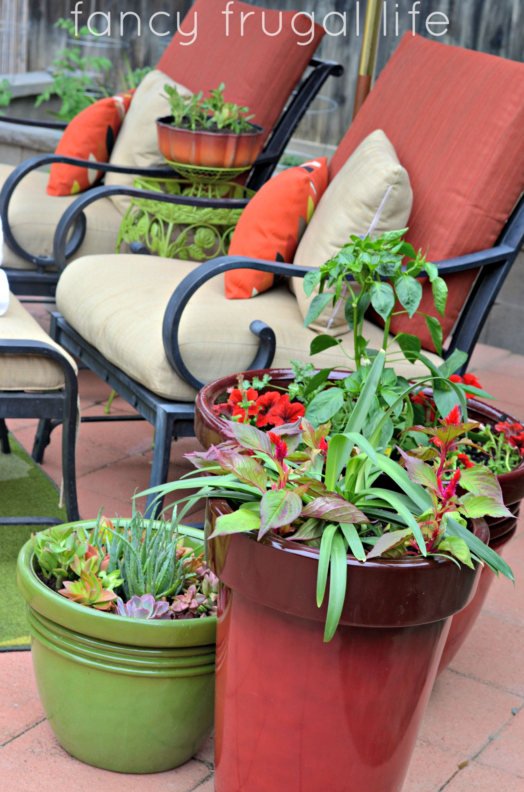 6f25116789c6c8f90a845e83ceb122d0 - Better Homes And Gardens Potted Plants Ideas