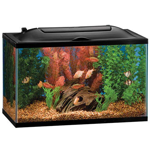 marineland 16336 bio, wheel led aquarium kit, 10 gallon ** click on ...