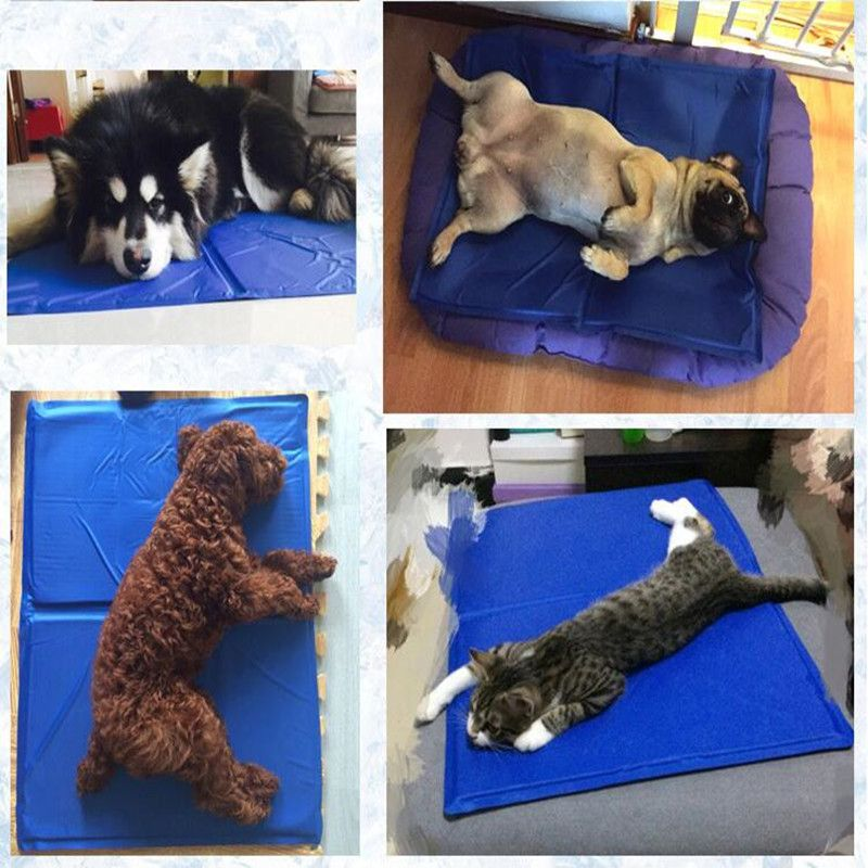 Re Usable Non Toxic Pet Cooling Mat Dog Cooling Pad Manufacturer