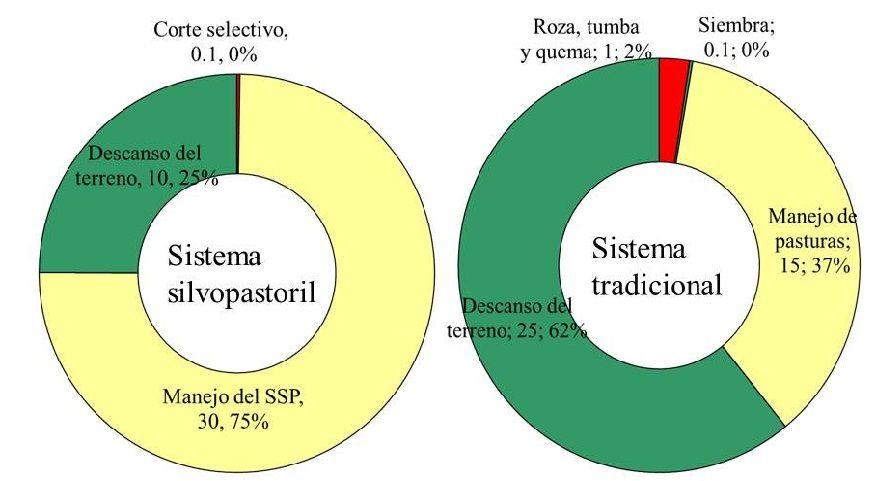 Producción de forraje en un sistema silvopastoril a partir de la selva mediana